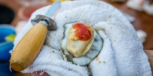 Tubby's Oyster Roast Business Connection | March 22