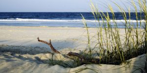City of Tybee to Restore South End Dunes