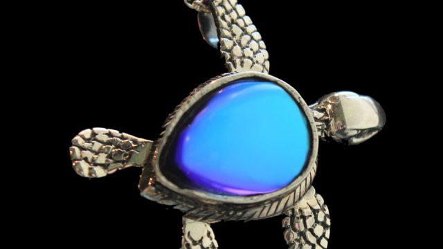 Sideways Sea Turtle