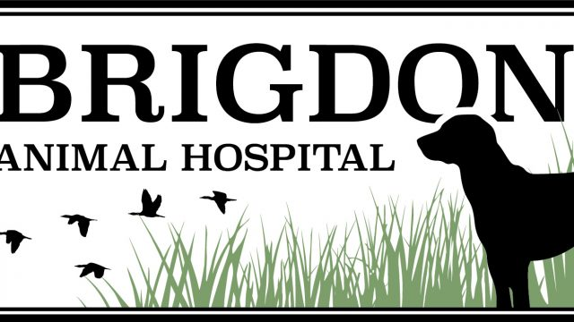 Brigdon Animal Hospital