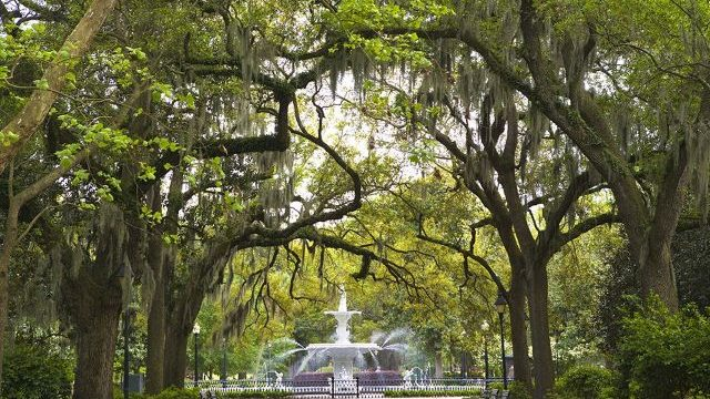 Savannah By Foot Tours