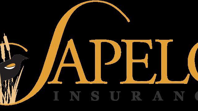 Sapelo Insurance Savannah Small Business Insurance